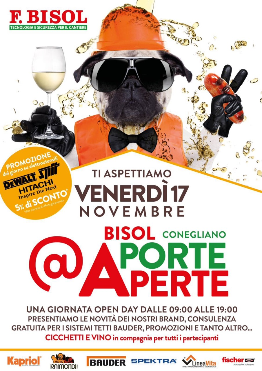 Venerdi 17 Novembre - Open day